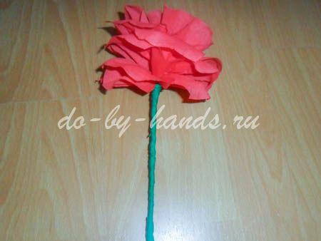 roza-iz-gofrirovannoy-b20