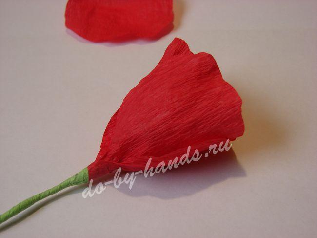Цветы из гофрированной бумаги своими руками пионы фото 477