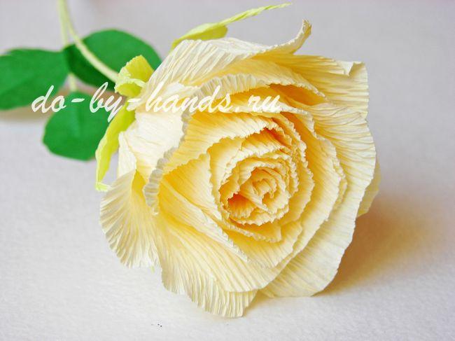 Роза из гофрированной бумаги поэтапно