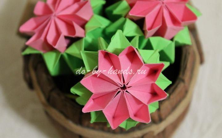 примулы: модульное оригами