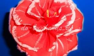 Цветок «Роза» из гофрированной бумаги