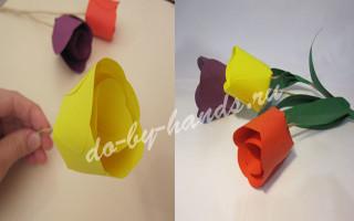 Тюльпаны из цветной бумаги своими руками для детей, пошагово с фото