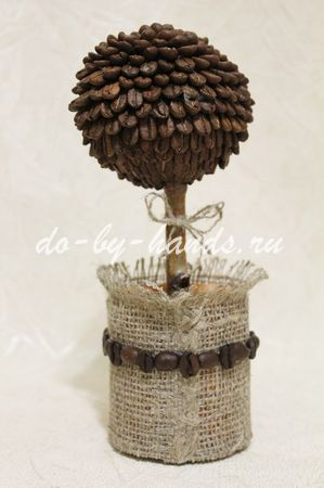 горшок для кофейного дерева