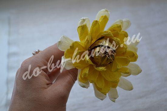 хризантемы из конфет